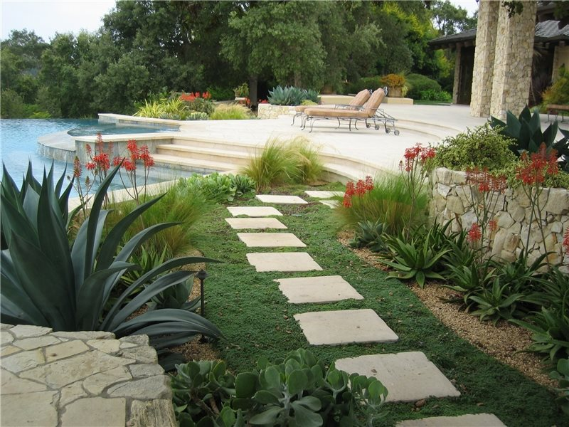 Mediterranean Landscaping Amelia B. Lima & Associates San Diego, CA