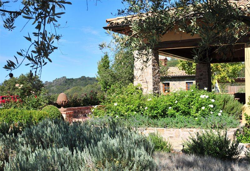 Mediterranean Landscaping Cagwin & Dorward Novato, CA