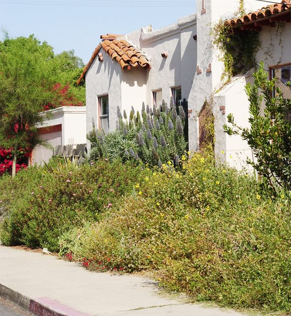 Hot Walk Mediterranean Landscaping Maureen Gilmer Morongo Valley, CA