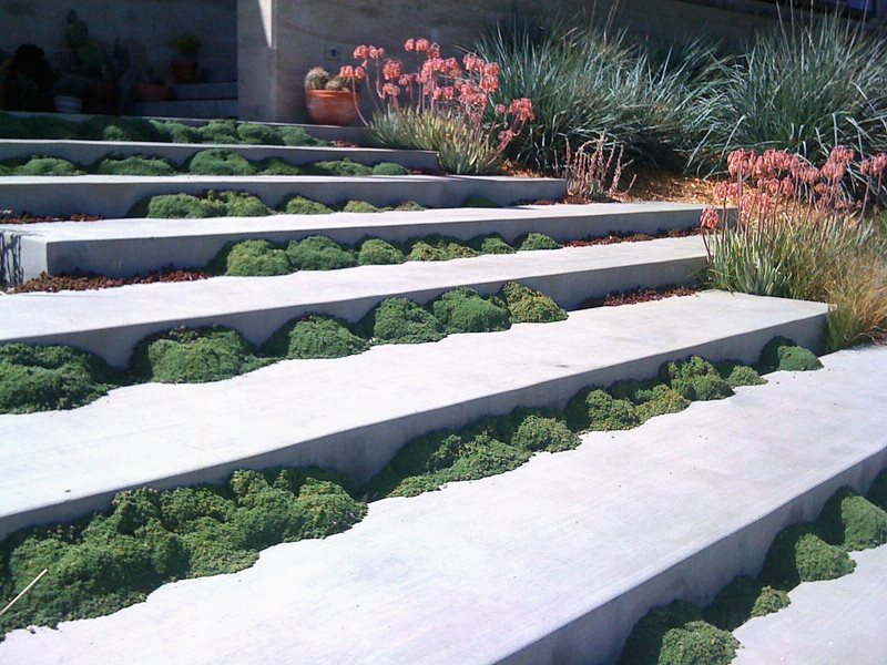 Unique, Steps Modern Landscaping Landscaping Network Calimesa, CA