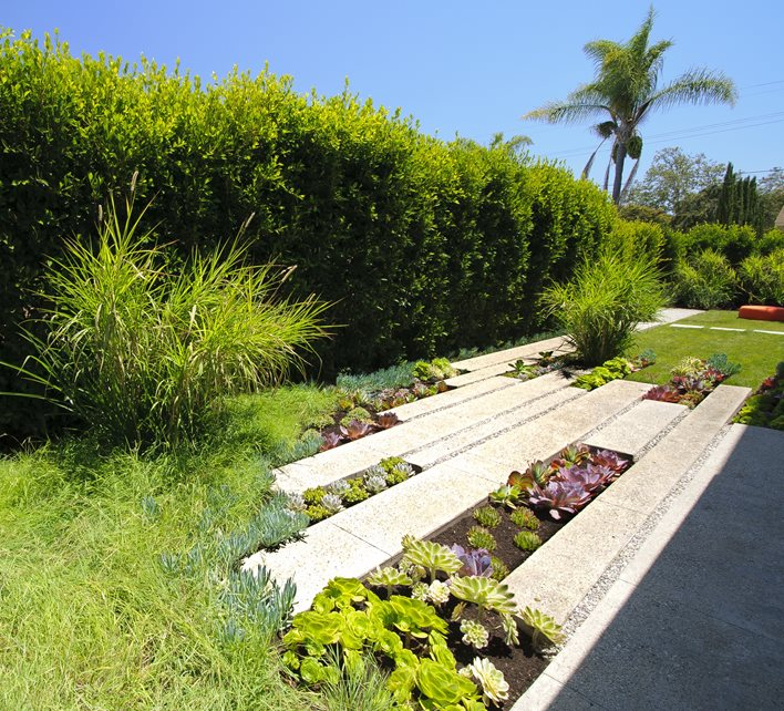 Walkway Modern Landscaping Landscaping Network Calimesa, CA