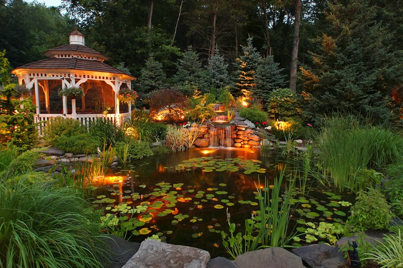Backyard Koi Pond Pond and Waterfall Neave Group Outdoor Solutions Wappingers Falls, NY