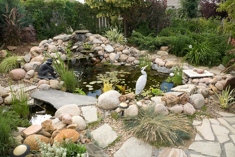 Custom Built Pond, Koi Fish Pond and Waterfall Landscaping Network Calimesa, CA