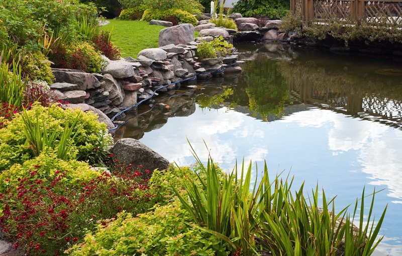Large Backyard Pond, Pond Boulders Pond and Waterfall Landscaping Network Calimesa, CA