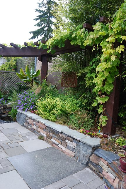 Small Stone Retaining Wall, Climbing Vines Retaining and Landscape Wall N.W. Bloom Mill Creek, WA