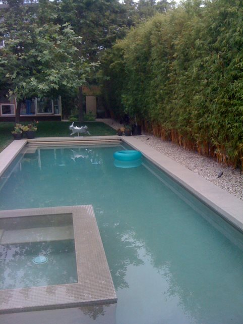Sophisticated simple pool landscaping gallery best idea for Simple backyard pools