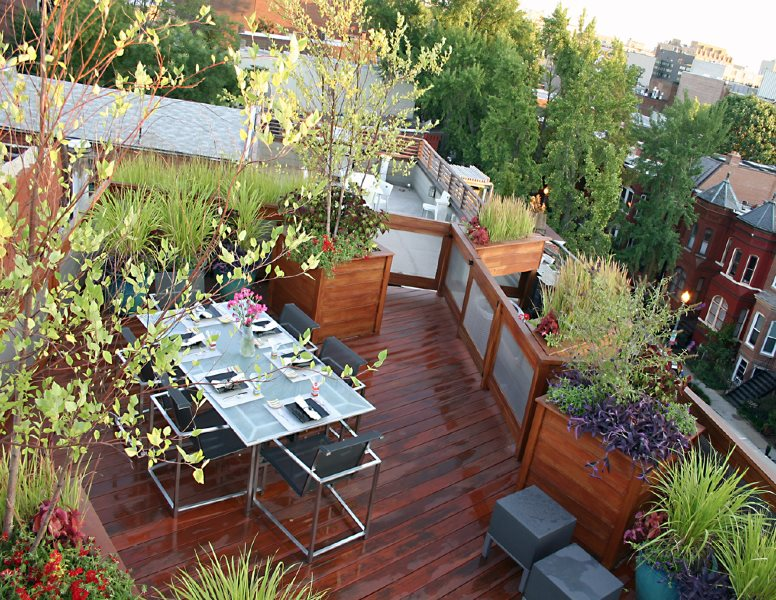 Rooftop Deck, Small Deck, Rooftop Outdoor Living Small Yard Landscaping Botanical Decorators Olney, MD