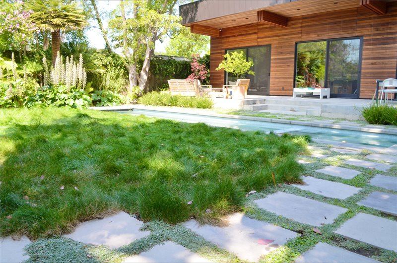 Lawn, No Mow Southern California Landscaping Landscaping Network Calimesa, CA