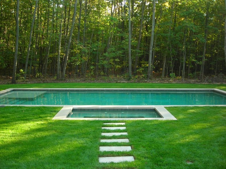 Limestone Pool Coping Swimming Pool Apex Landscape Grand Rapids, MI
