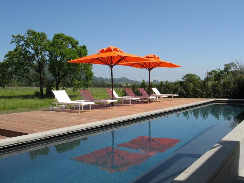 Modern Pool, Lap Pool Swimming Pool Cagwin & Dorward Novato, CA