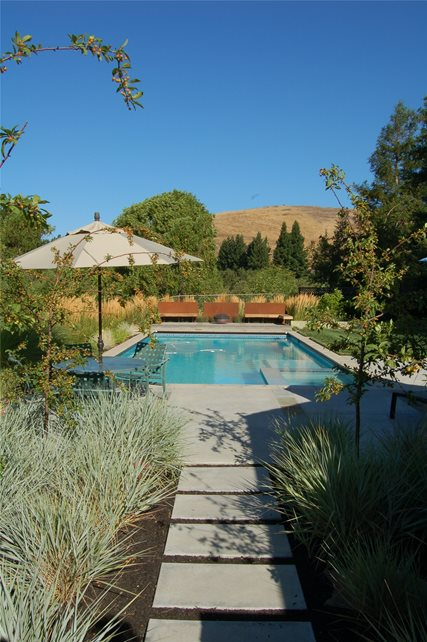 Swimming Pool Walnut Creek Ca Photo Gallery