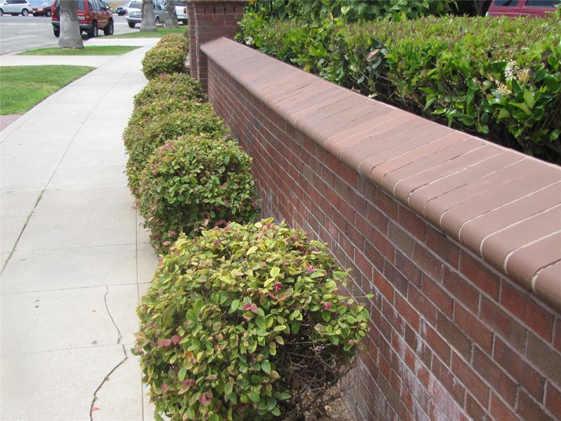 Brick, Retaining Wall Traditional Landscaping Landscaping Network Calimesa, CA