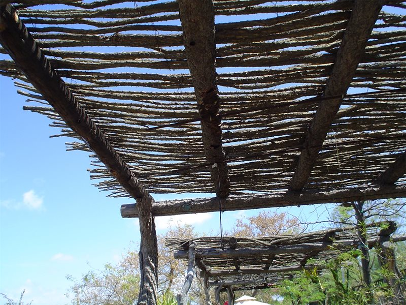 Rustic Shade Arbor Tropical Landscaping Maureen Gilmer Morongo Valley, CA