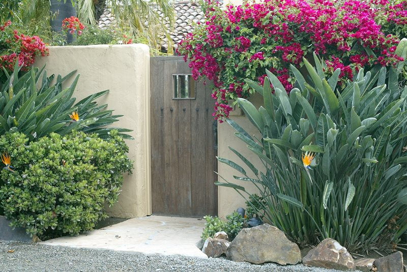 Tropical Plants, Rustic Gate, Stucco Wall Tropical Landscaping Landscaping Network Calimesa, CA
