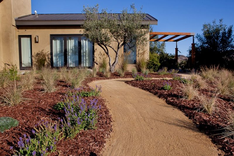 Dg Path, Plant Spacing Walkway and Path Down to Earth Landscapes Santa Barbara, CA