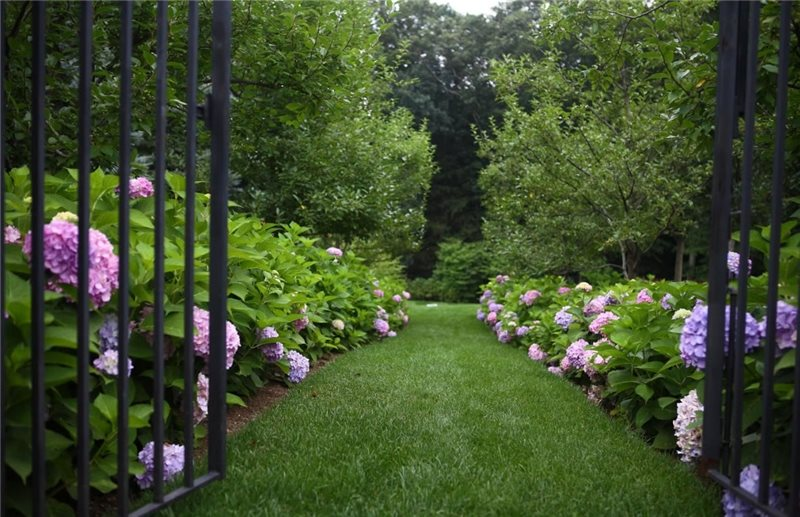 Garden Path, Gras Path Walkway and Path James Doyle Design Associates Greenwich, CT