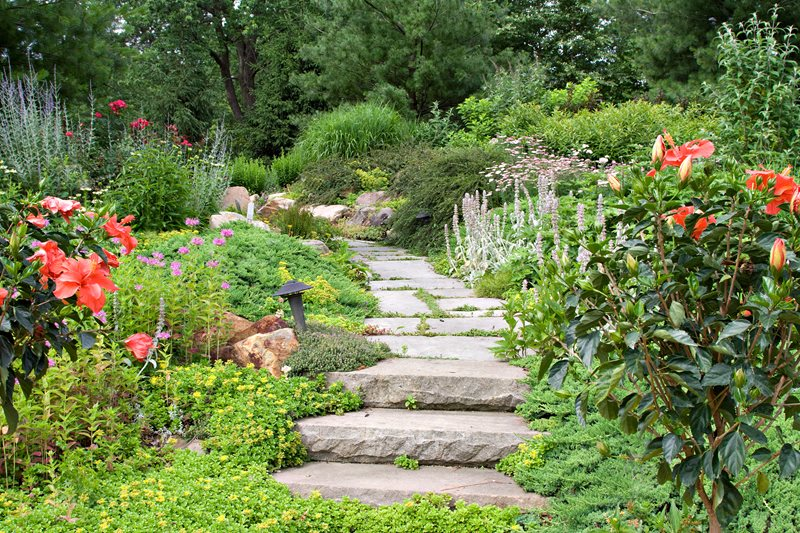 Stone Garden Path, Groundcover Joints Walkway and Path Landscaping Network Calimesa, CA