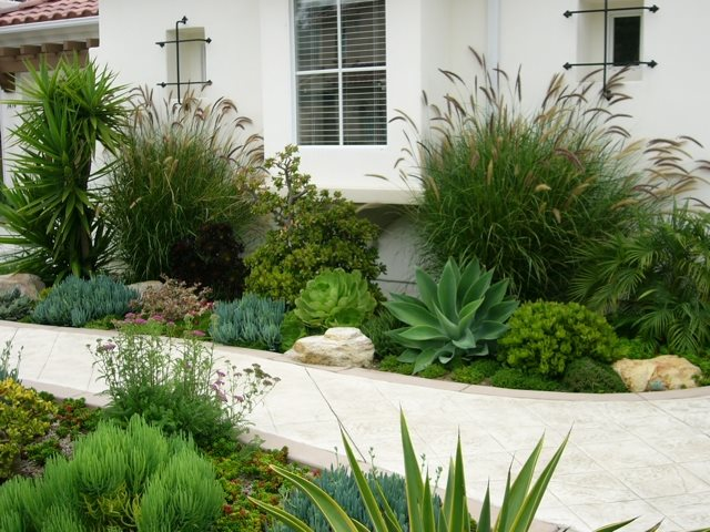 Succulent Path Garden Walkway and Path Designs by Shellene San Diego, CA