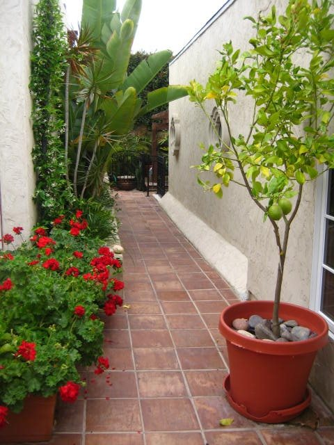 Walls, Walkways Walkway and Path Landscaping Network Calimesa, CA