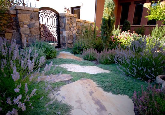 Xeriscape Groundcover Walkway and Path Blooming Desert Landscapes Powell Butte, OR