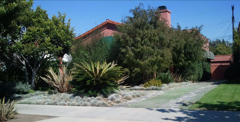 Xeriscape Landscaping Los Angeles Ca Photo Gallery