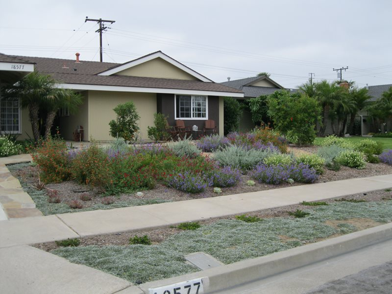 Xeriscape landscaping tustin ca photo gallery for Local landscape designers