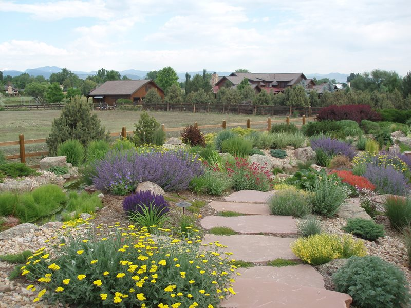 Xeriscape landscaping longmont co photo gallery for Garden design xeriscape