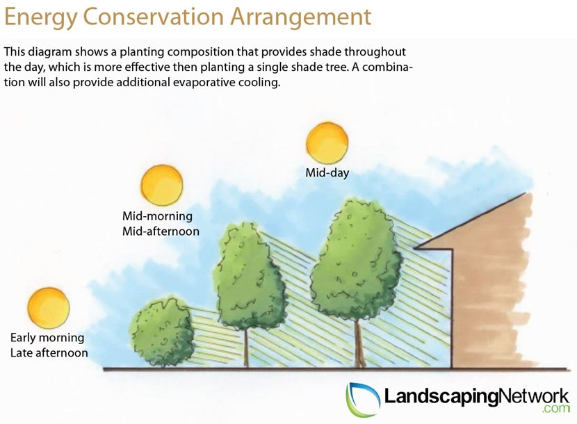 Energy Efficient Landscaping Landscaping Network