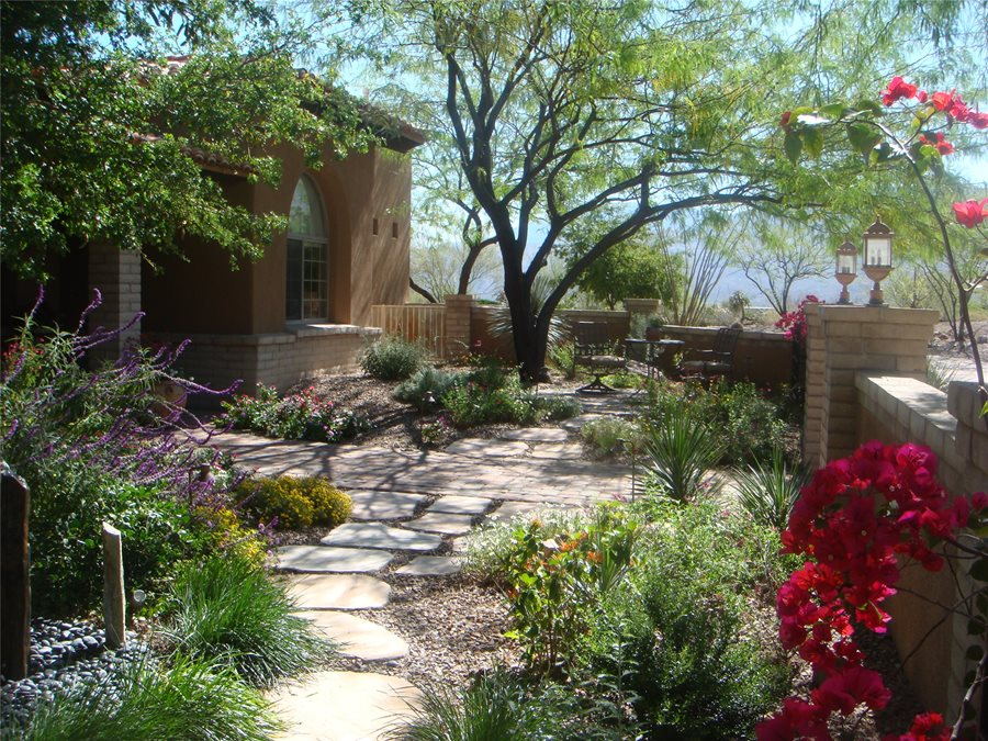 Front Yard Landscape Design Ideas 8 low maintenance evergreen border with a pop of color Casa Serena Landscape Designs Llc Las Cruces Nm Front Yard Lights Front Yard Landscaping