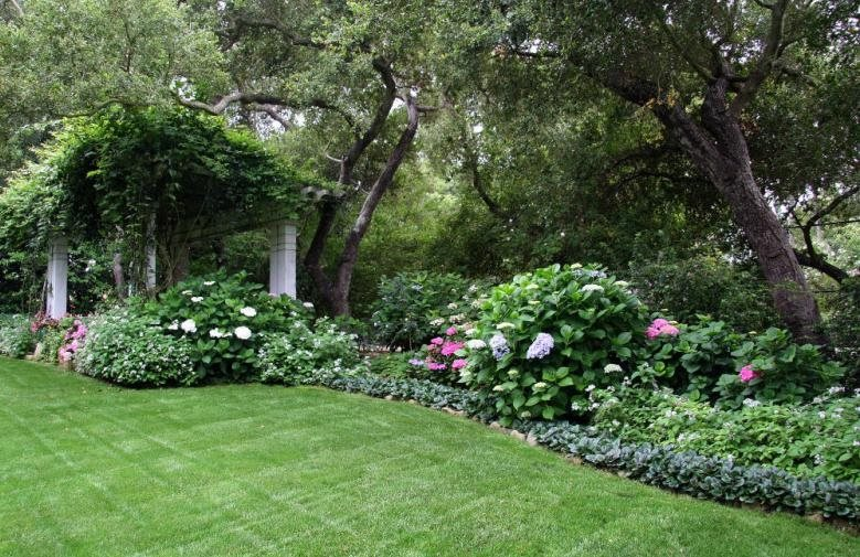 Exceptionnel Victorian, Shrubs Northern California Landscaping Donna Lynn Landscape  Design Santa Barbara, CA