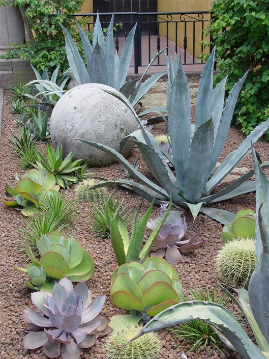Landscaping with Succulents - Landscaping Network - how to design a succulent garden