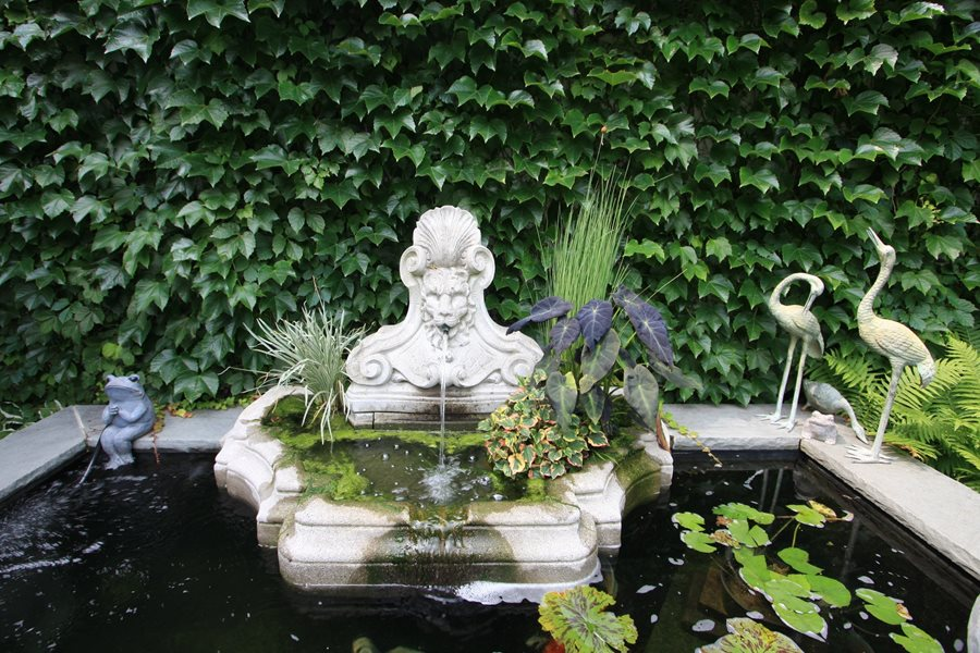 Garden pond design ideas landscaping network Pond with fountain