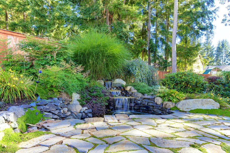 Hillside erosion control landscaping network for Tiered pond waterfall