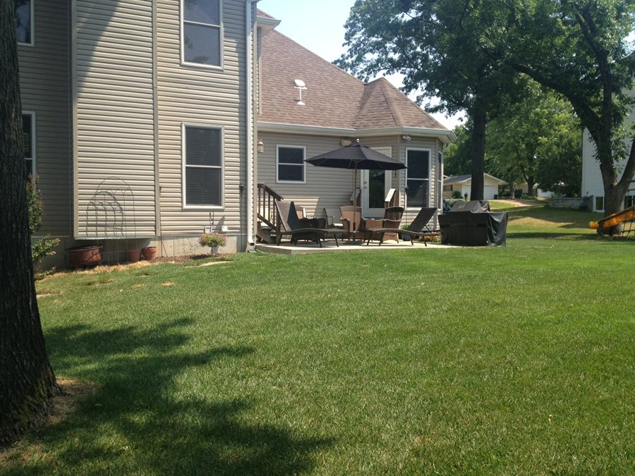 Before and After Backyards - Landscaping Network