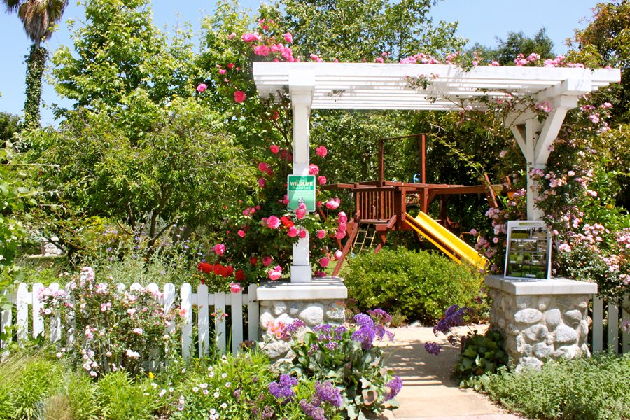 Garden arbor tips landscaping network for Landscaping your garden