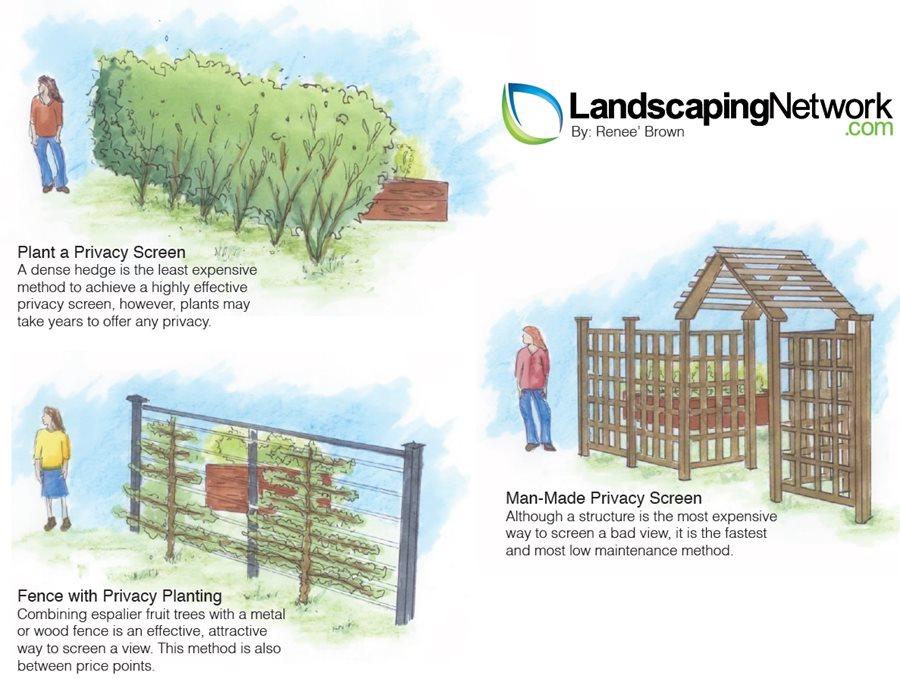 Garden Enclosure Inspiration – Clover and Thyme |Vegetable Garden Screen