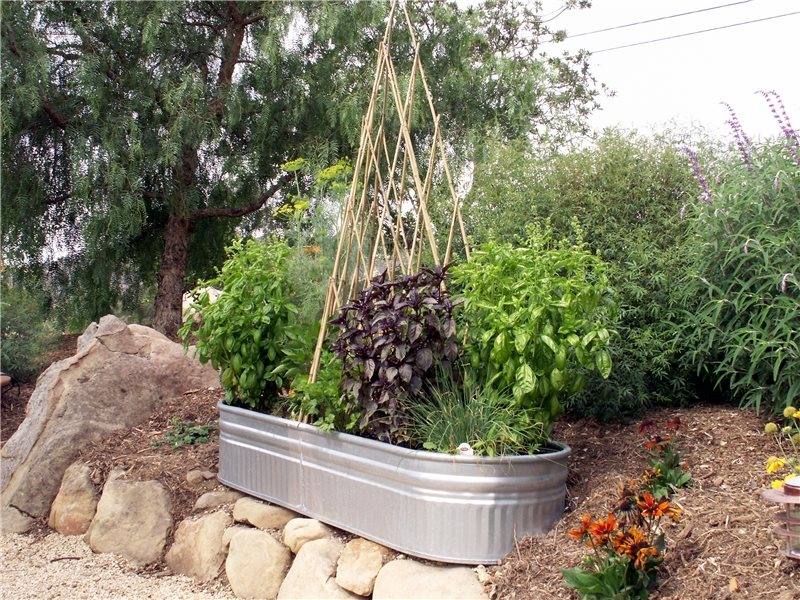 Small Vegetable Garden Ideas - Landscaping Network