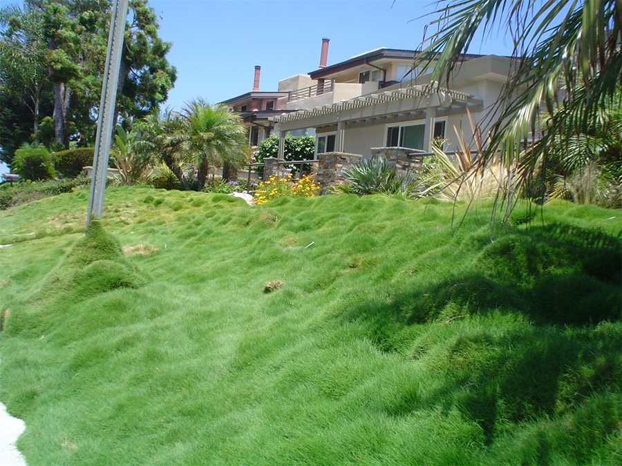 Garden Ideas Steep Bank hillside landscaping - how to landscape a slope - landscaping network