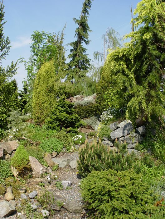 Boulder And Rock Selection Placement Landscaping Network Classy Alpine Garden Design Exterior