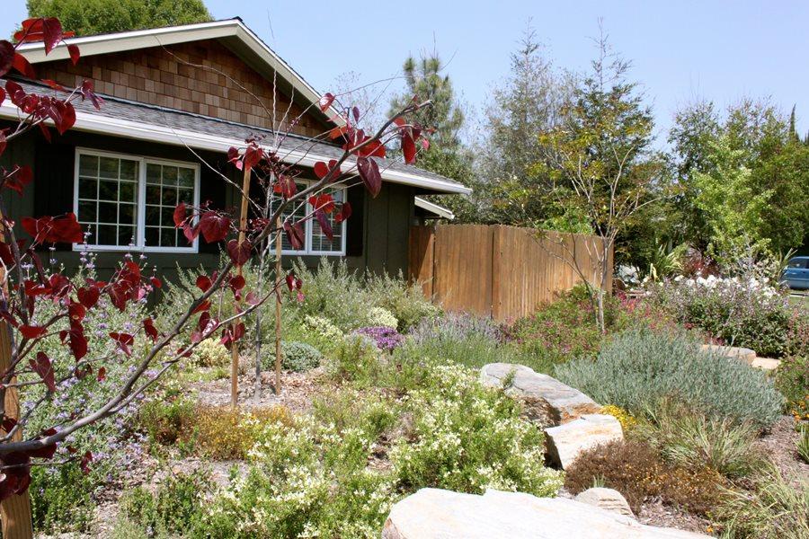 natural-garden-rock-landscaping-network_4402 Natural Back Yard Garden Designs on back yard landscaping, back yard design, back yard greenhouses, back yard hot springs, back yard plants, back yard flower pots,
