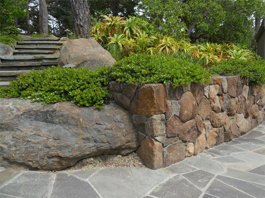 Landscaping Rocky Soil Landscaping Network