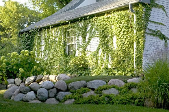 Landscaping Wall Photos : Design ideas for retaining walls landscaping network