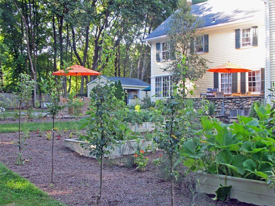 Backyard Vegetable Gardens - Landscaping Network
