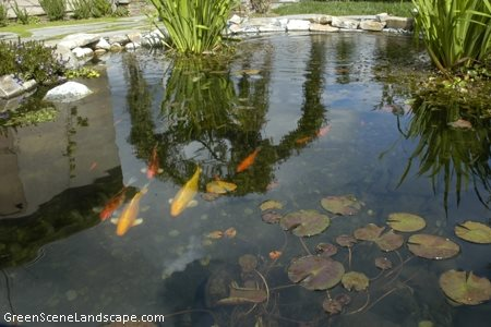 Pond planning tips landscaping network for How much does it cost to build a fishing pond
