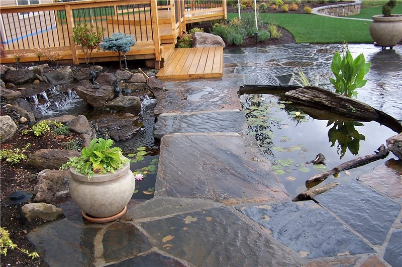 Backyard lake landscaping landscaping network for Round garden pond designs