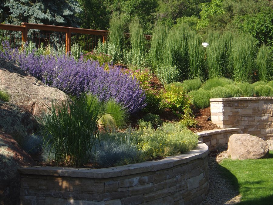 Professional xeriscaping tips landscaping network for Hillside landscaping