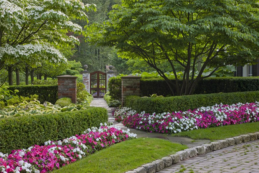 English garden design landscaping network for English garden design
