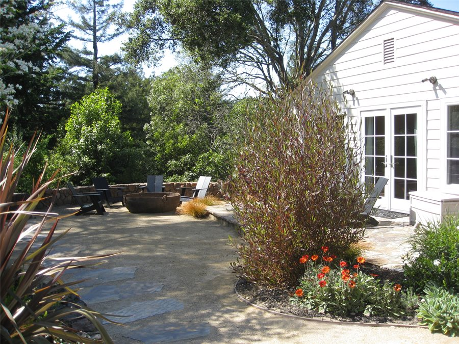 lawnless yard swimming pool dig your garden landscape design san anselmo ca