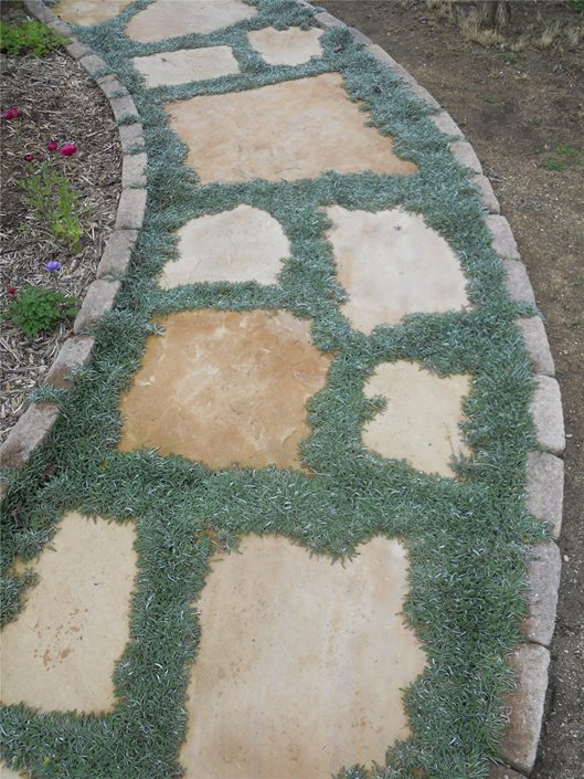 Walkway Amp Path Edging Landscaping Network