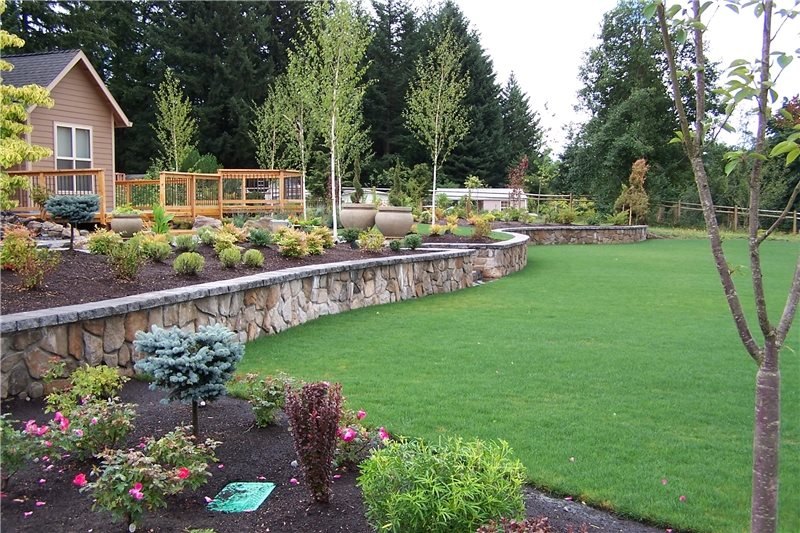 Backyard Lake Landscaping Landscaping Network